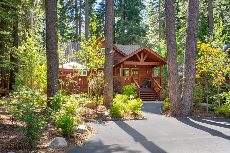 Lake Tahoe Landscape Design Project