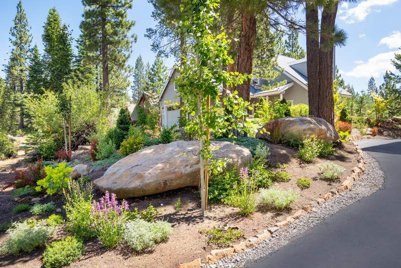 Truckee Landscape Design Project