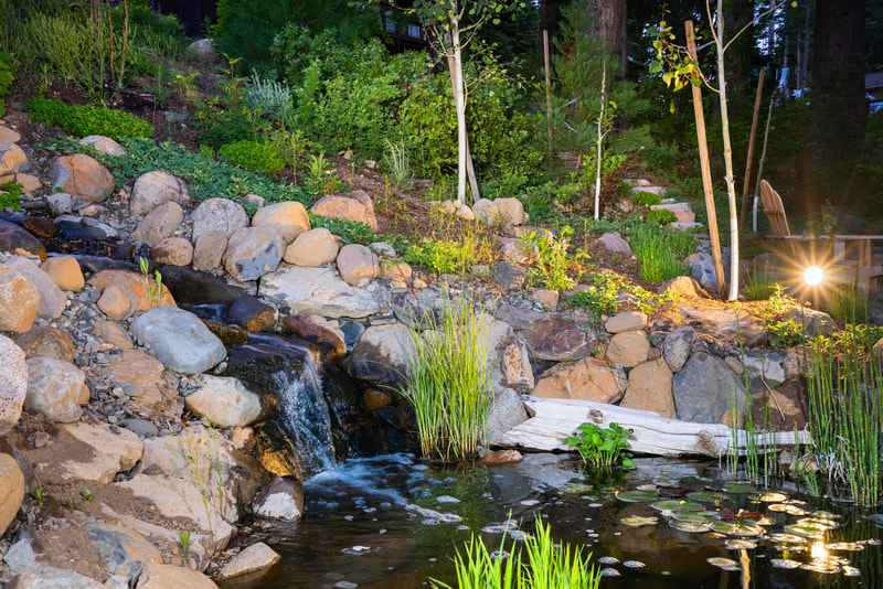 Tahoe City Landscape Design Project